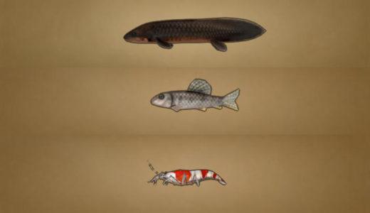 【釣り】v5.2で追加された新しい魚の生息場所